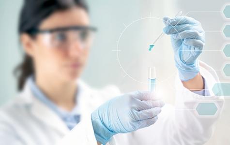 Celule stem2