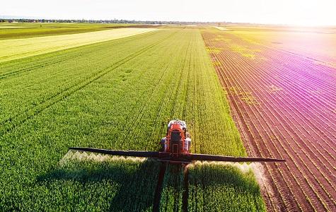 Asigurari agricole5